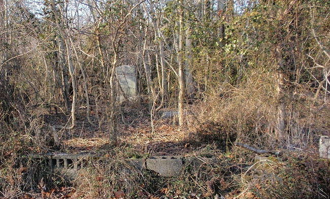 chandler_cemetery_newkent_loriebradshaw